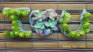 Small Picture Gardening With Succulents Tips Inspiration