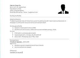 Basic Resume Formats Amazing Simple Resume Layouts Template For Basic Resume A Simple Resume