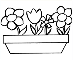 Flower Coloring Pages Sheets Flowers For Preschool Free Printable