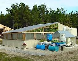 aquaponic gardening. make an aquaponic garden | aquaponic/gardening pinterest gardening