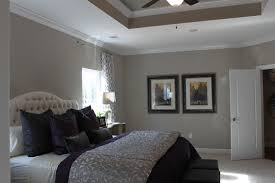 Awesome Master Bedroom Tray Ceiling Photo   7