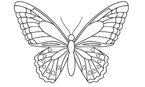 Printable Butterfly Outline Printable Butterfly Pictures