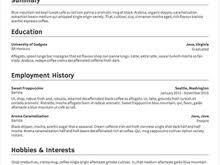 Standard Resumes Formats Free Resume