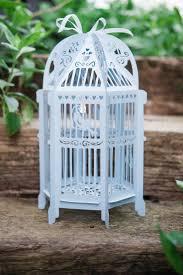 Baby blue lovebird lantern