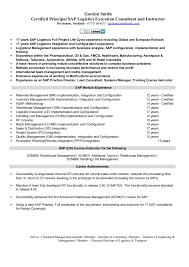 Inventory Management Resume Best SAP Logistics Execution Consultant Cv