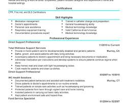 100 Resume Qualifications Examples For Customer Service Job