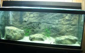 beautiful fish tank background paper photos concept rocky aquarium tanks make your own filter