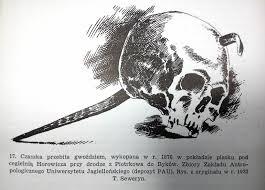 Polish Vampires Bloody Truth Behind Dark Myth Article Culturepl