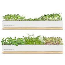 Indoor Kitchen Herb Garden Kit Indoor Herb Gardens For Your Urban Oasis Liketimes For Philippines