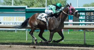 Fort Erie Race Track set to allow horse owners, trainers on race days |  NiagaraFallsReview.ca
