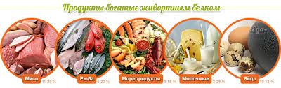Белки продукты богатые белками Белковая пища для здоровья