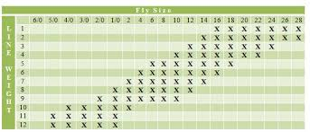 How To Choose A Fly Line Everything You Should Want To Know