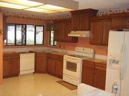 Kitchen Renovation Idea The Best Kitchen Renovation In Small House Home Decorating Ideas