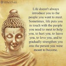 Buddha Quotes On Life Delectable Pin By Mia On Buddha Quotes Pinterest Buddha Buddhism And