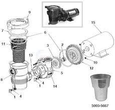 dynamo pump motors wiring diagram photo album wire diagram pool booster pump parts also pentair superflo pool pump wiring diagram pool booster pump parts also pentair superflo pool pump wiring diagram