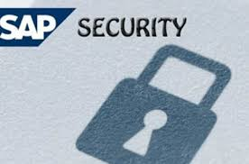 Sap Security Training Sap Security Online Training Got
