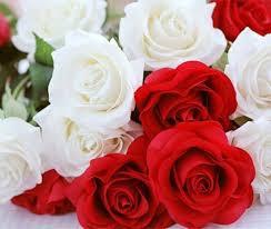 Makna Filosofi dan Cara Membuat Buket Bunga Mawar untuk Pacar