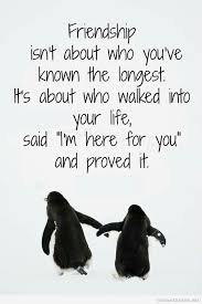 New Quotes About Friendship Simple New Friendship Quote