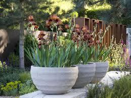 Garden Pots Pots In Gardens Or Yards Hgtv