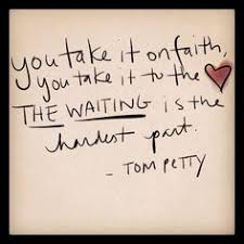 Tom Petty on Pinterest | Stevie Nicks, Lindsey Buckingham and Neil ... via Relatably.com