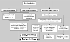 Types Of Arrhythmia Chart Schematic Overview Of The Pathophysiology Of Cardiac