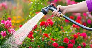 best expandable garden hose. Best Expandable Garden Hose E