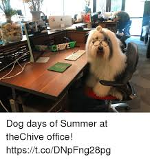 thechive austin office. Summer, Office, And Dog: Dog Days Of Summer At TheChive Office! Https Thechive Austin Office