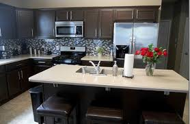 Image Of: Kitchen Paint Colors With Dark Cabinets