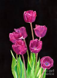 purple painting red violet tulips with black background by sharon freeman