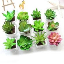 small plant for office desk. cactus simulation flower small bonsai mini plant with white ceramic pot artificial succulents for house office desk decoration