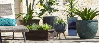 planters plant pots at home