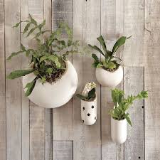 indoor wall hanging planters amazing wall hanging planters indoor 85 with additional decoration