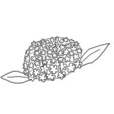 紫陽花の書き方 イラストを簡単に描くポイントは イラストの簡単な