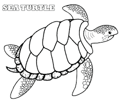 Cute Turtle Coloring Pages Thewestudio