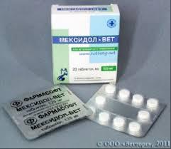 <b>Мексидол</b> - <b>Вет</b> | Ветеринарная клиникa «4 лапы+»