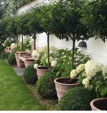 lush landscaping ideas. Yard Ideas Lush Landscaping G