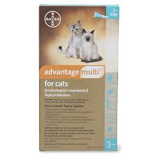 imidacloprid for cats. Delighful Cats Advantage Multi Topical For Cats Prescription Intended Imidacloprid E