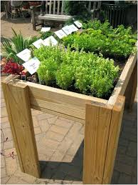 vegtrug herb garden herb garden in the raised bed for balcony vegtrug herb garden planter with vegtrug herb garden