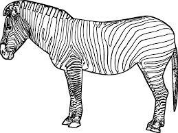 Small Picture Zebra Coloring Pages Miakenasnet