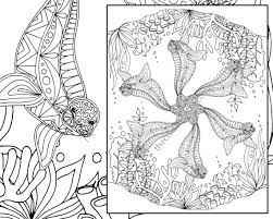 Small Picture Top 82 Seal Coloring Pages Free Coloring Page