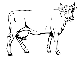 Small Picture Free Printable Cow Coloring Pages For Kids Animal Place