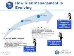 Business Risk Management Plan Template Business Risk Management Tracking Tools And Templates Project 8