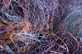 wiring diagram tapatalk