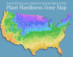 Everything You Wanted To Know About Plant Hardiness Zones