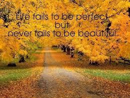 Beautiful Fall Quotes Best of Beautiful Fall Quotes QuotesGram Quotes Pinterest Leaf Quotes