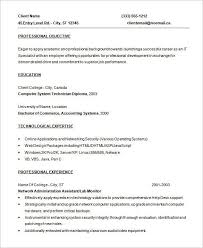 Programmer Resume Template  8 Free Samples Examples Format