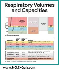 Summary Of Respiratory Volume And Capacity For Males And