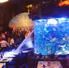 underwater restaurant disney world. A Fish Tank Sprung Leak At T-Rex Cafe In Disney World\u0027s Downtown Marketplace Underwater Restaurant World