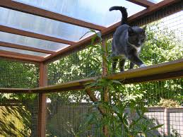 Catio Spaces - Diy Catio Plans And Cat Enclosures