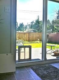 patio pet doors sliding door pet door pet door for sliding glass door dog door in glass patio pet petsafe freedom patio pet doors for sliding doors 96